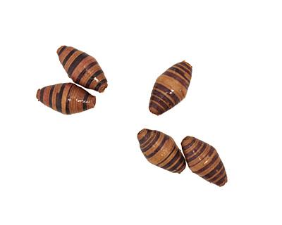 African Paper (tan, chocolate, black stripe) Rice 29-30x14-15mm