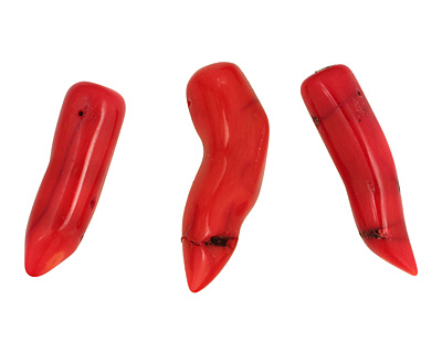 Coral Horn 12-14x37-43mm