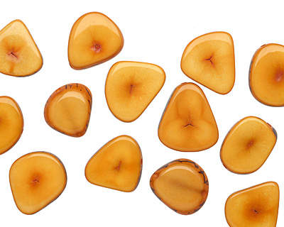 Tagua Nut Gold Banana Chip 22-29x16-22mm