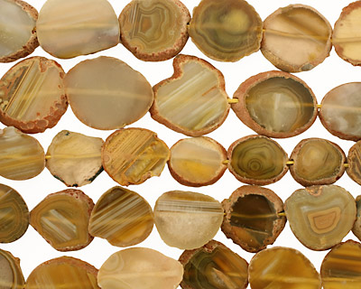 Yellow Line Agate Slice Freeform Pieces 23-33x19-30mm
