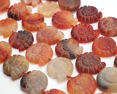 Carnelian (natural-matte) Ammonite 21-25mm