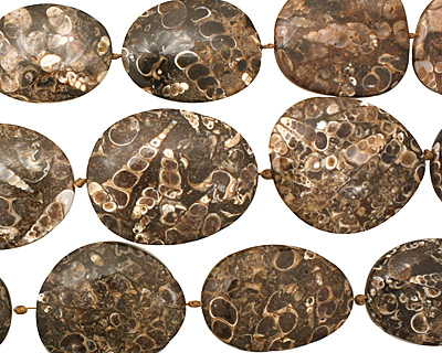 Turritella Agate Flat Freeform Slab 26-41x29-34mm
