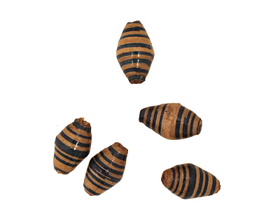 African Paper (beige, teal stripe) Rice 15x8-9mm