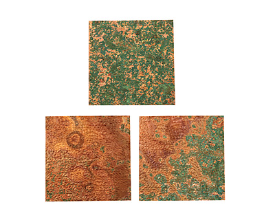 Lillypilly Antique Flower Garden Embossed Patina Copper sheet 3