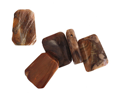 Madagascar Petrified Wood Ladder 18-19x25mm