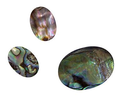 Abalone Oval Cabochon 13x18mm