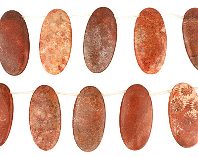 Fossil Coral (red) Flat Oval Drop 25x50mm