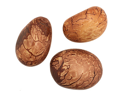 Tagua Nut Caramel Nugget 40-45x32-36mm