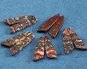 Leopardskin Jasper Irregular Triangle Pendant Pair 12x45mm