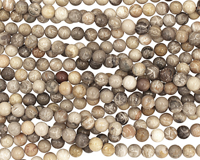 Gray Fossil Coral Round 8mm