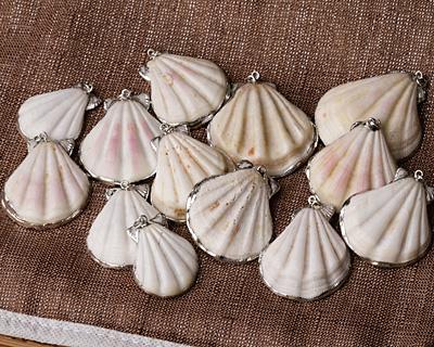 White Pectin Scallop Shell Pendant w/ Silver Finish30-37x38-42mm