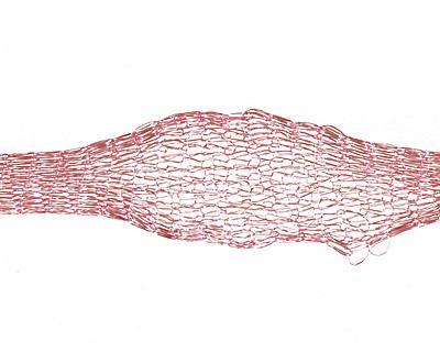 WireLace Dusty Rose Ribbon 6mm