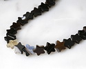 Black Sardonyx Star 10mm