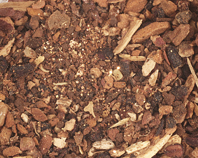Element's Earth Texture Roots 1 oz.