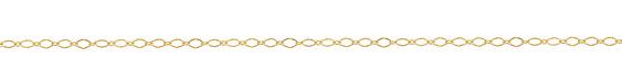 Hamilton Gold (plated) Flat Diamond Chain