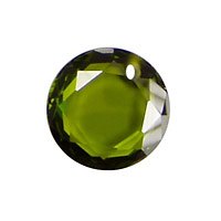 Fern Faceted Coin 16mm