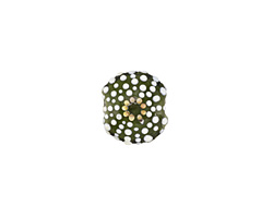 Grace Lampwork Green Sea Urchin Lentil 13x17mm