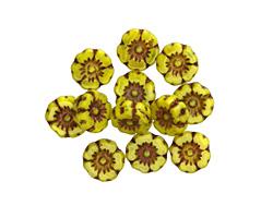 Czech Glass Bronzed Citrus Hibiscus Coin 7mm