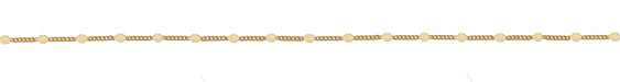 Satin Hamilton Gold (Plated) Pressed Coin Curb Chain