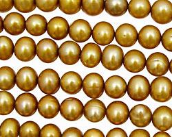 Gold Potato 6-7mm