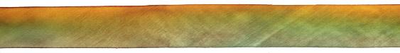 """Golden Lichen Hand Dyed 100% Silk Ribbon 1"""""""