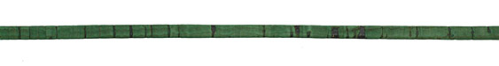 Grass Green Portuguese Cork Cord Flat 5mm