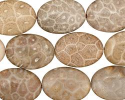 Gray Fossil Jasper Flat Oval 18x13mm
