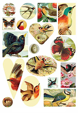 Nunn Design Nature Collage Sheet