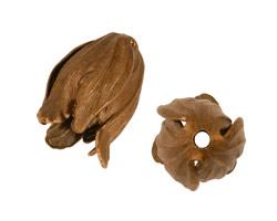 Vintaj Natural Brass Flourish Petal Bead Cap 22x14mm