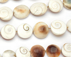 Conch Shell Puff Coin 16-20mm