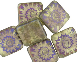 Czech Glass Laser Etched Ammonite on Matte Olivine w/ Rainbow Finish Puff Square 15mm