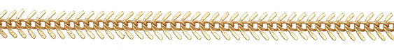 Satin Hamilton Gold Fishbone Chain 7x15mm