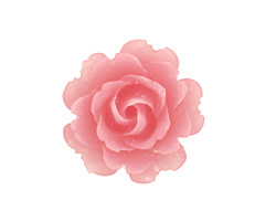 Transparent Matte Pink Lucite Rose Cabochon 23mm