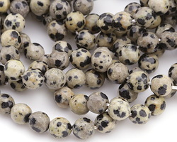 Dalmatian Jasper Faceted Round 8mm