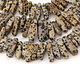 Dalmatian Jasper Stick Drops 3-7x17-31mm