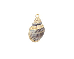 Banded Small Conch Shell Pendant w/ Gold Finish 9-13x17-25mm