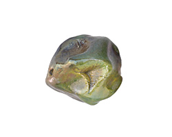 Xaz Raku Elusive Green Large Nugget 20-23mm