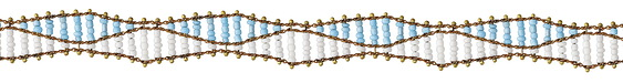 Zola Elements Aqua & White Beaded Double Helix on Brass Chain