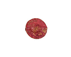 Patricia Healey Copper Dimpled Saucer 16x5mm