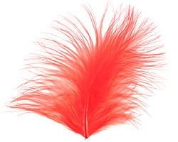 Tangerine Marabou Feather 100-152mm