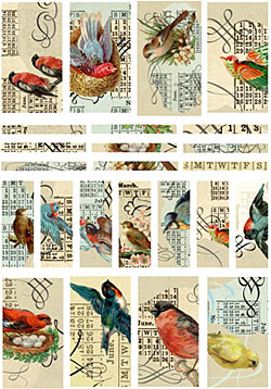 Nunn Design Birds Channel Bead Collage Sheet
