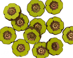 Czech Glass Bronzed Chartreuse Hibiscus Coin 12mm