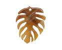 Zola Elements Caramel Bullhorn Acetate Monstera Leaf Focal 32x40mm
