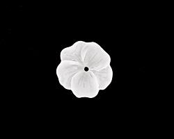 Matte Crystal Lucite Buttercup Flower 4x14mm