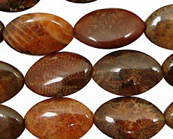 Fossil Coral (red) Horse Eye 19x12mm