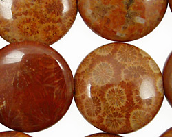 Fossil Coral (red) Puff Coin 25mm