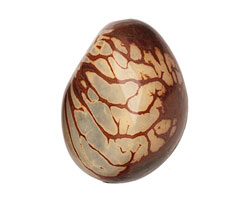 Tagua Nut Stonewashed Nugget 40-45x32-36mm