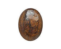 Bronzite Oval Cabochon 30x40mm