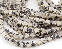 Dalmatian Jasper Star 4mm