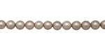 Champagne (matte) Shell Pearl Round 4mm
